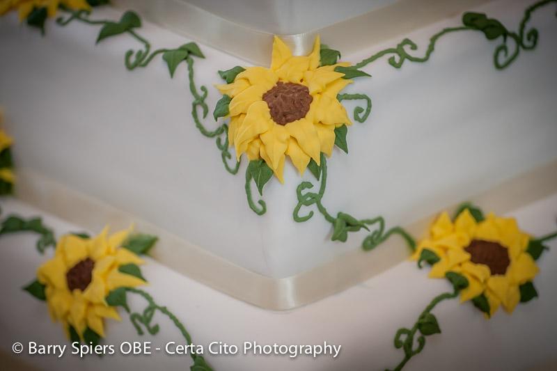 Chris_Alys_wedding_cake_03